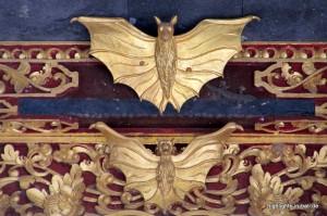 Feldermaus-Detail